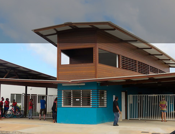 Le bois en Guyane