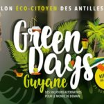 LES GREEN DAYS